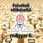 Felvételi előkészítő magyar 6.